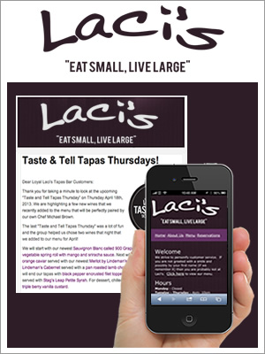 examples_lacis